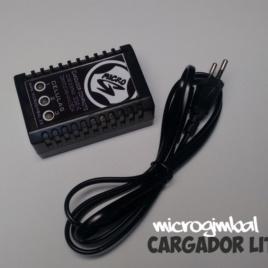 Cargador baterías de Litio 220V